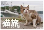 Minami_2